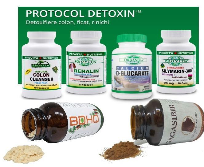 protocol detoxifiere