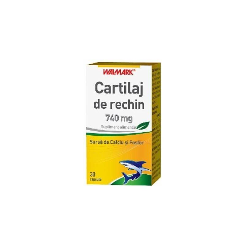 CARTILAJ DE RECHIN 740MG 30CPS N.B. thumbnail
